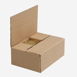 Verpackungskarton für 6 x Fac-125