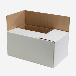 Verpackungskarton für12 x 1,0l Fruchtsaftflaschen