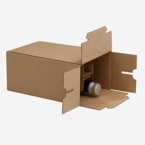 Karton für 6 Flaschen Dor-250 L156 x B109 x H239mm