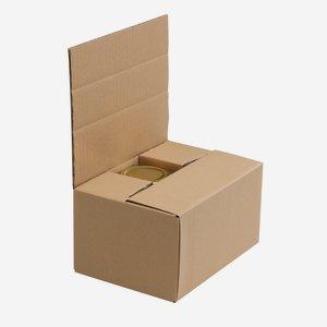 Verpackungskarton für 6 x Stur-435