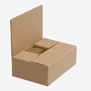 Verpackungskarton für 6x Stur-225