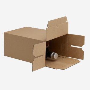 Verpackungskarton für 6x 0,5l Marasca Flasche