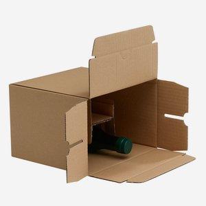 Verpackungskarton für 6x 0,25l Steiermarkölflasche