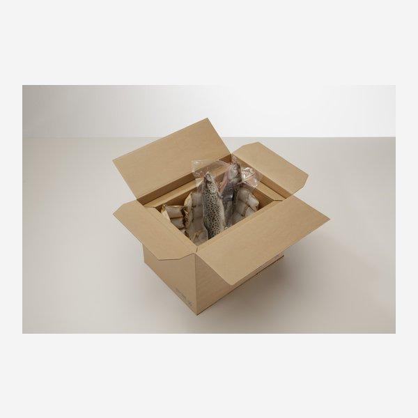 Kühlbox aus 100% Papier braun